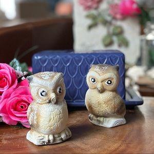 Vintage Owl Romantic Salt & Pepper Shakers GUC